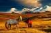 http://viza.md/content/mongolia-dezvolt%C4%83-turismul-intern